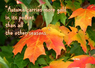 Autumn slideshow 2013 (17) - Copy