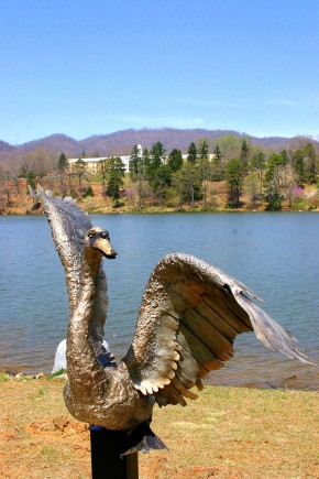 This gorgeous sculpture of a swan, opening his wing, suddenly appeared at the lake.  There is not yet a marker indicating the artist or the donor.